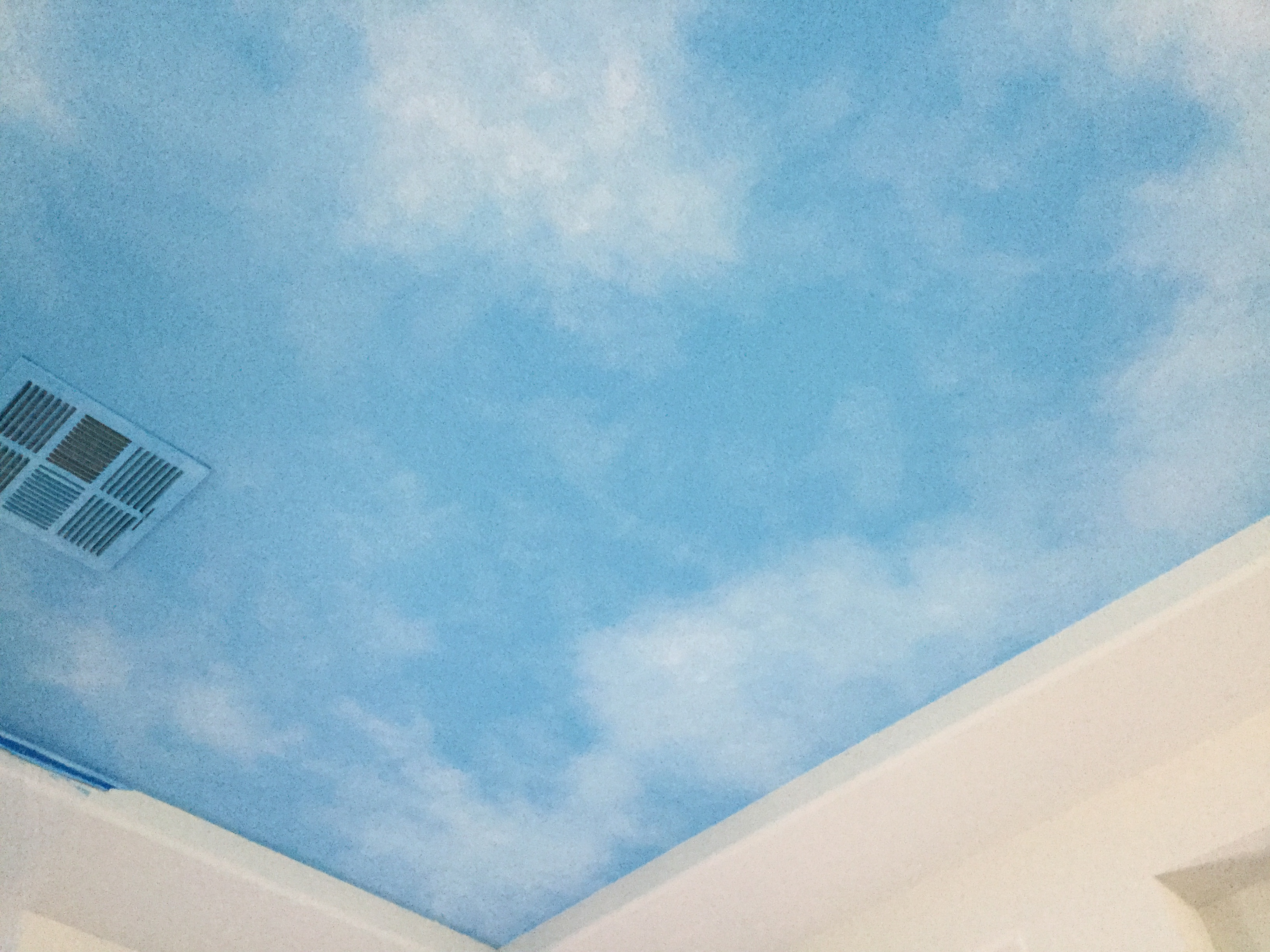 Cloudy Ceiling Art